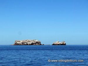La Lobera Mar de Cortes