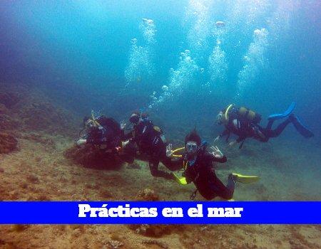 Aguas abiertas del curso Open water diver Madrid