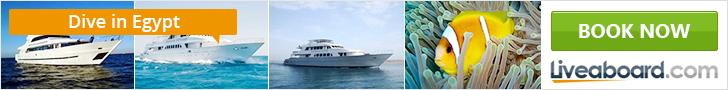 Ofertas cruceros vida a bordo Mar Rojo