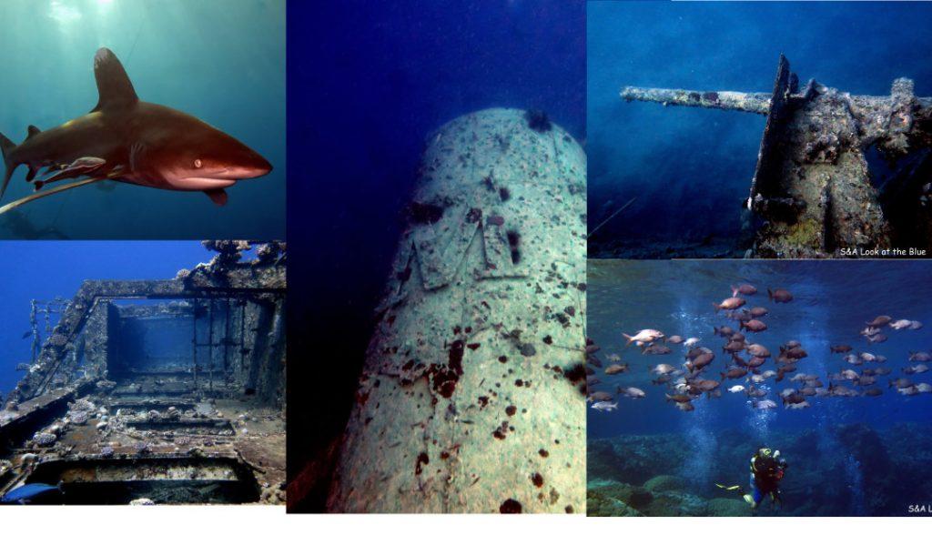 La mejor ruta de buceo del Mar Rojo